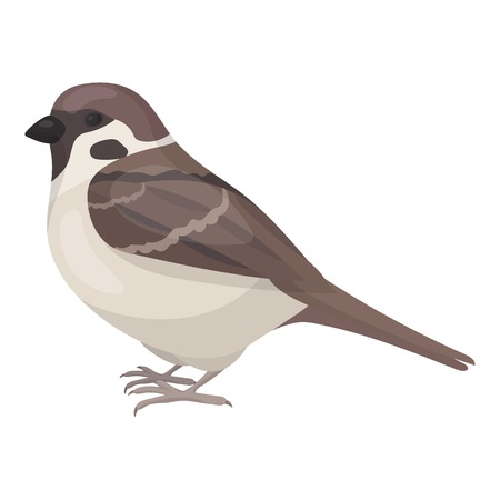 sparrow: Sparrow icon in cartoon style isolated on white background. Bird symbol vector illustration.