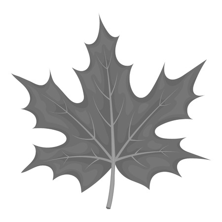 thanksgiving day symbol: Maple leaf icon in monochrome style isolated on white background. Canadian Thanksgiving Day symbol vector illustration.