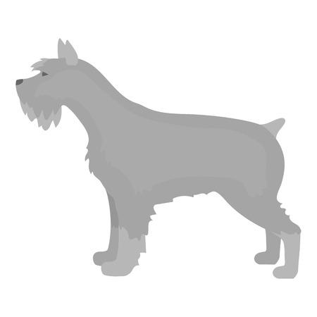 schnauzer: Schnauzer vector illustration icon in monochrome design