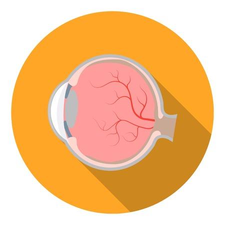 sclera: Eyeball icon in flat style isolated on white background. Organs symbol vector illustration. Illustration
