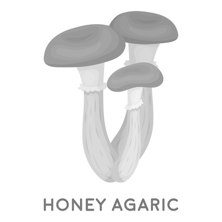 agaric: Honey agaric icon in monochrome style isolated on white background. Mushroom symbol vector illustration.
