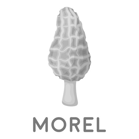 sponge mushroom: Morel icon in monochrome style isolated on white background. Mushroom symbol vector illustration.