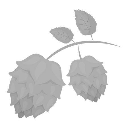 bier: Hops icon in monochrome style isolated on white background. Oktoberfest symbol vector illustration.