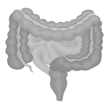 alimentary canal: Gastrointestinal tract icon in monochrome style isolated on white background. Organs symbol vector illustration. Illustration