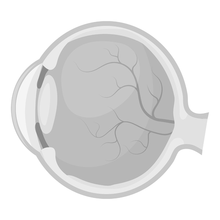 optic nerve: Eyeball icon in monochrome style isolated on white background. Organs symbol vector illustration. Illustration