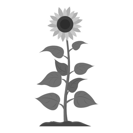stamens: Sunflower icon monochrome. Single plant icon from the big farm, garden, agriculture monochrome. Illustration