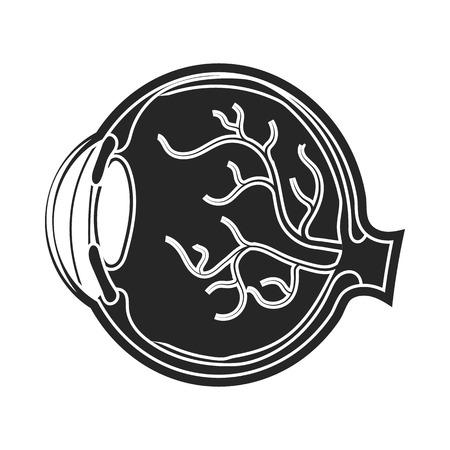 sclera: Eyeball icon in black style isolated on white background. Organs symbol vector illustration. Illustration