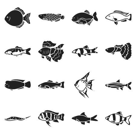 pygocentrus: Aquarium fish set icons in black style. Big collection aquarium fish vector symbol stock Illustration
