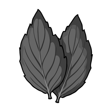 basil herb: Violet basil icon in monochrome style isolated on white background. Herb an spices symbol vector illustration.