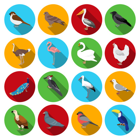Bird set icons in flat style. Big collection of bird vector symbol stock Illustration