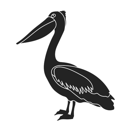 Pelican icon in black style isolated on white background. Bird symbol vector illustration.