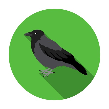 corvus: Crow icon in flat style isolated on white background. Bird symbol vector illustration.