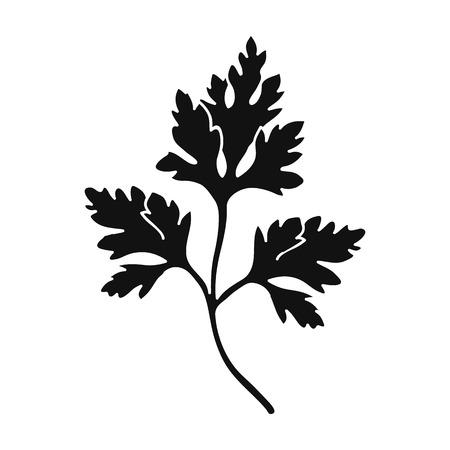 perejil: Icono de perejil en estilo negro aislado sobre fondo blanco. Herb una ilustración del vector del símbolo de las especias.