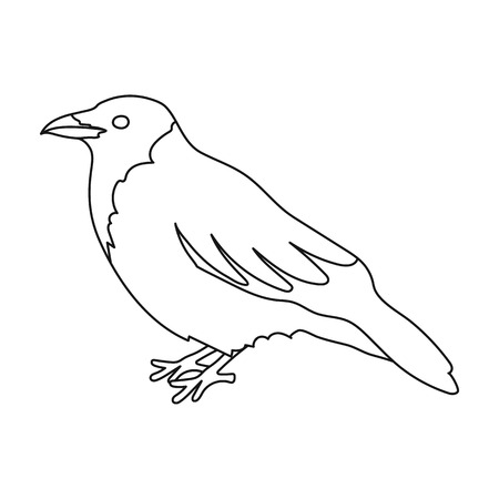corvus: Crow icon in outline style isolated on white background. Bird symbol vector illustration.