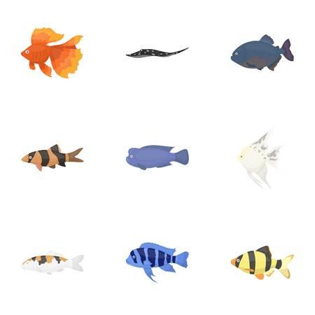 cichlid: Aquarium fish set icons in cartoon style. Big collection of aquarium fish symbol stock Illustration