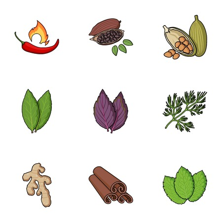 Herb and spices set icons in cartoon style. Big collection of herb and spices symbol stock