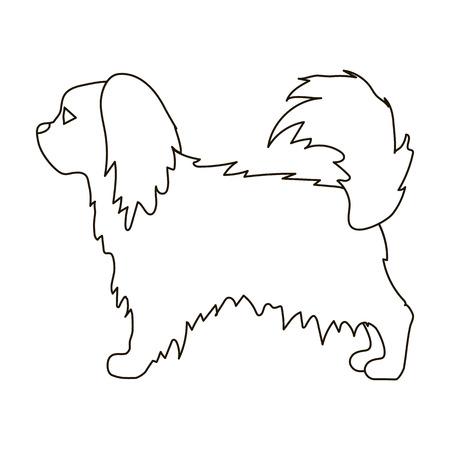 pekingese: Pekingese icon in outline style isolated on white background. Dog breeds symbol vector illustration. Illustration