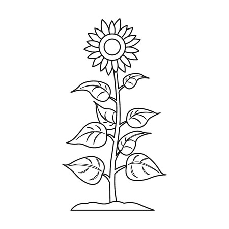 Sunflower icon in outline style isolated on white background. Plant symbol vector illustration.