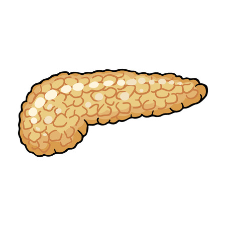 trzustka: Human pancreas icon in cartoon style isolated on white background. Human organs symbol vector illustration. Ilustracja