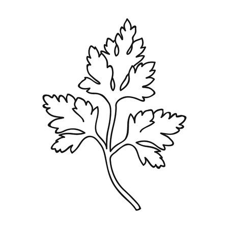 Icona di prezzemolo in stile del contorno isolato su priorità bassa bianca. Erba un'illustrazione di vettore di simbolo delle spezie. Vettoriali