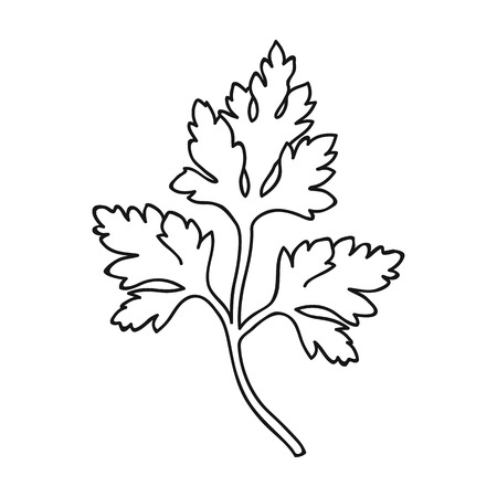 Parsley icon in outline style isolated on white background. Herb an spices symbol vector illustration.