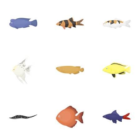 cichlid: Aquarium fish set icons in cartoon style. Big collection of aquarium fish vector symbol stock Illustration