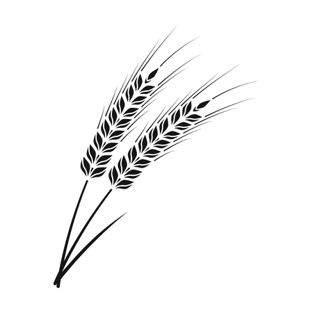 Ears of wheat pasta icon in black style isolated on white background. Types of pasta symbol vector illustration.