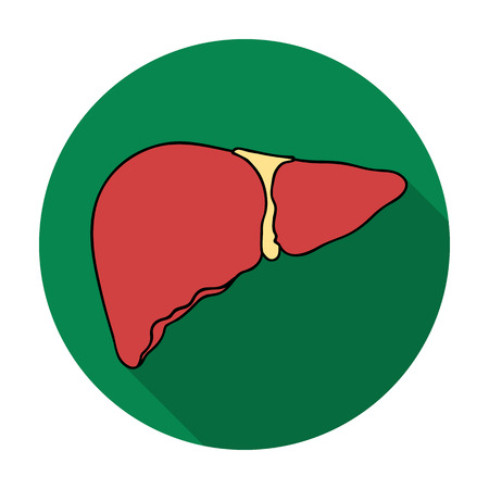 alimentary tract: Human liver icon in flat style isolated on white background. Human organs symbol vector illustration.