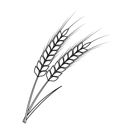 Ears of wheat pasta icon in outline style isolated on white background. Types of pasta symbol vector illustration. Illustration