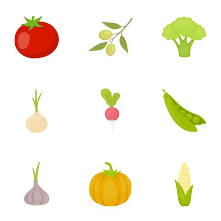 Vegetables set icons in cartoon style. Big collection of vegetables vector symbol stock Illustration