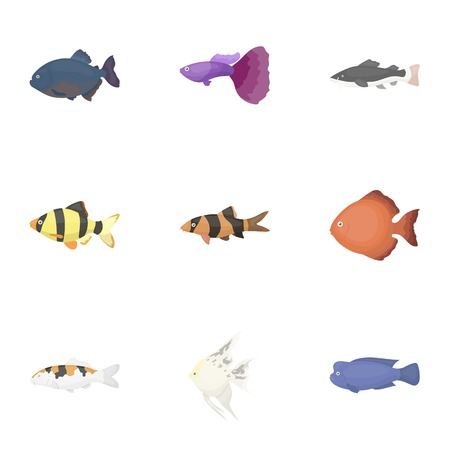 Aquarium fish set icons in cartoon style. Big collection of aquarium fish vector symbol stock Illustration
