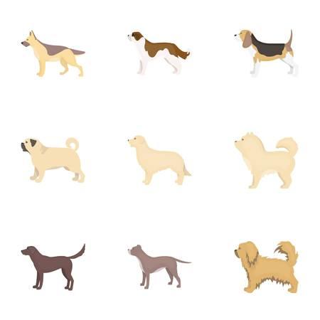 saint bernard: Dog breeds set icons in cartoon style. Big collection of dog breeds vector symbol stock