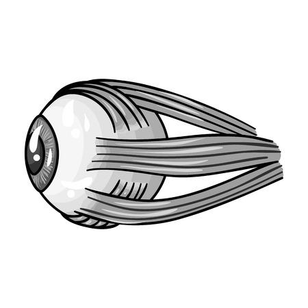 optic nerve: Human eyeball icon in monochrome style isolated on white background. Human organs symbol vector illustration.