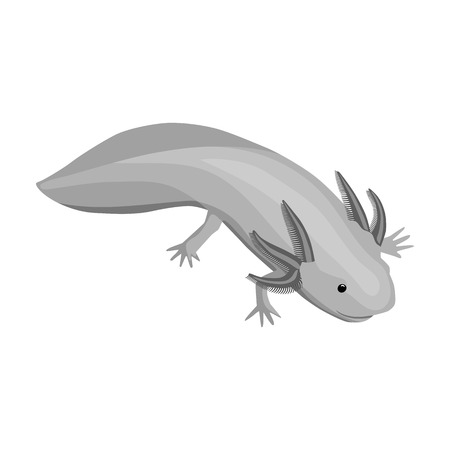 Mexican axolotl icon in monochrome style isolated on white background. Mexico country symbol vector illustration.