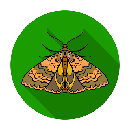 moth: Moth icon in flat design isolated on white background. Insects symbol stock vector illustration. Illustration