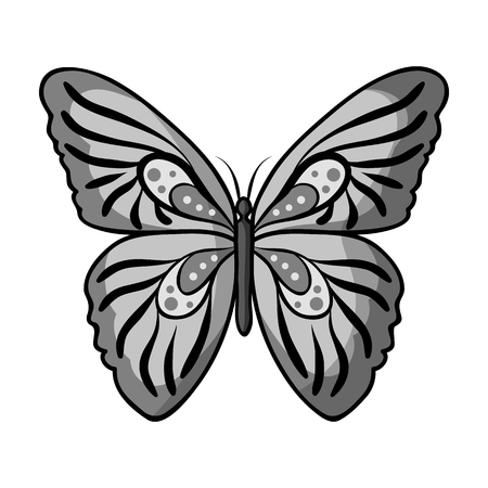 Butterfly icon in monochrome design isolated on white background. Insects symbol stock vector illustration. Illustration