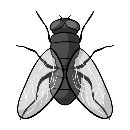 Fly icon in monochrome design isolated on white background. Insects symbol stock vector illustration.