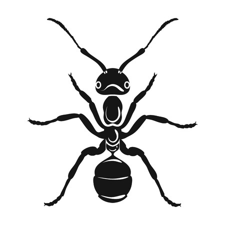Ant icon in black design isolated on white background. Insects symbol stock vector illustration.
