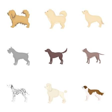 Dog breeds set icons in cartoon style. Big collection of dog breeds vector symbol stock illustration