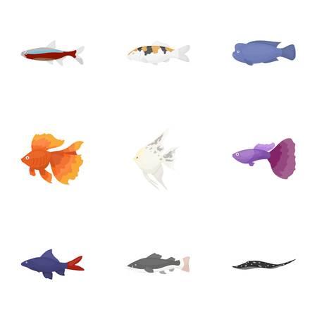 guppy fish: Aquarium fish set icons in cartoon style. Big collection of aquarium fish vector symbol stock illustration
