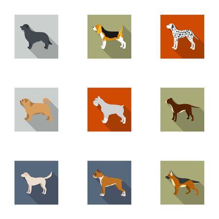 saint bernard: Dog breeds set icons in flat style. Big collection of dog breeds vector symbol stock illustration
