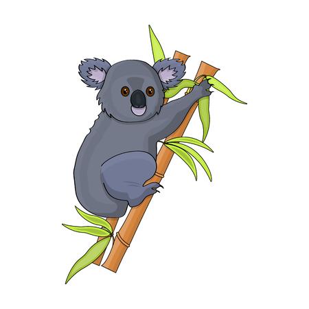 Australian koala icon in cartoon style isolated on white background. Australia symbol stock vector illustration. Illustration