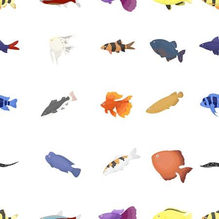 cyphotilapia: Aquarium fish pattern icons in cartoon style. Big collection aquarium fish vector symbol stock illustration Illustration