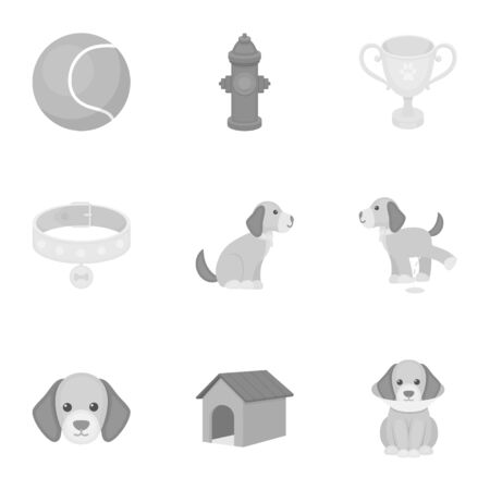 Dog equipment set icons in monochrome style. Big collection dog equipment vector symbol stock illustration Ilustração