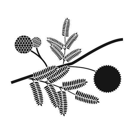 on white: Yellow mimosa flower icon in black style isolated on white background. Australia symbol stock vector illustration.