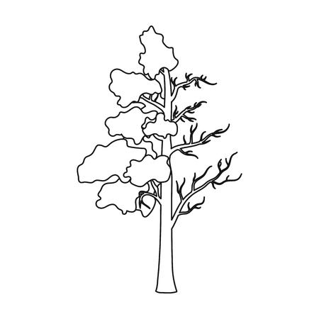 트리 절반 녹색 잎과 흰색 배경에 고립 개요 스타일에서 절반 건조 아이콘의 전체. 바이오 및 생태 기호 주식 벡터 일러스트 레이 션.