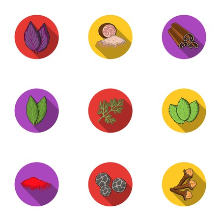 nutmeg: Herb and spices set icons in flat style. Big collection of herb and spices vector symbol stock illustration