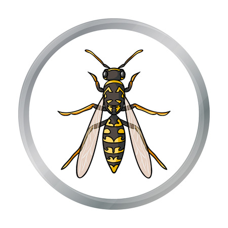 wasp: Wasp icon in cartoon style isolated on white background. Insects symbol stock vector illustration.