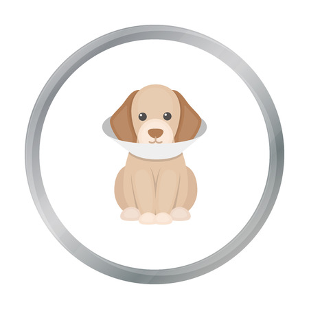 cold compress: Sick dog vector icon in cartoon style for web