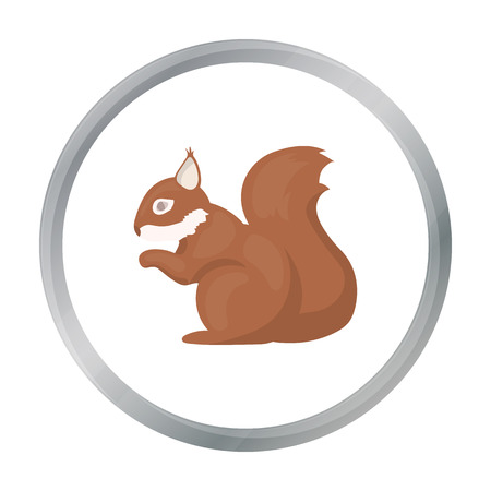 artful: Squirrel vector icon in cartoon style for web